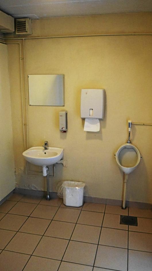 SLITT: Toalettanlegget og hele kjelleren trenger også en kraftig oppussing.
