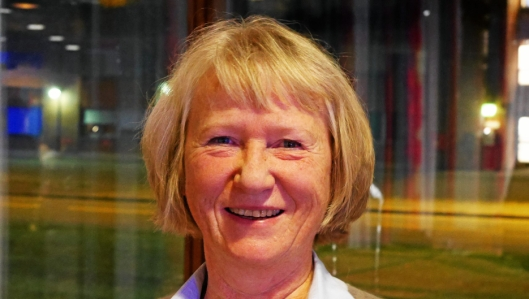 ØNSKET ET ANNET NAVN: Venstres Inger Johanne Bjørnstad ønsket å forkorte kommunenavnet.