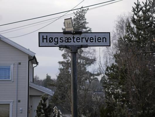 OPPEGÅRD: Høgsæterveien bør erstattes med Høgseterveien, ifølge Språkrådet.