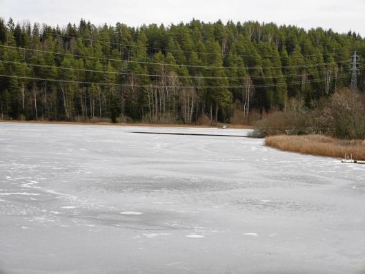 VAKKERT: Tussetjern er en perle mellom Oppegård og Ski.
