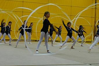 Glede og gymnastikk