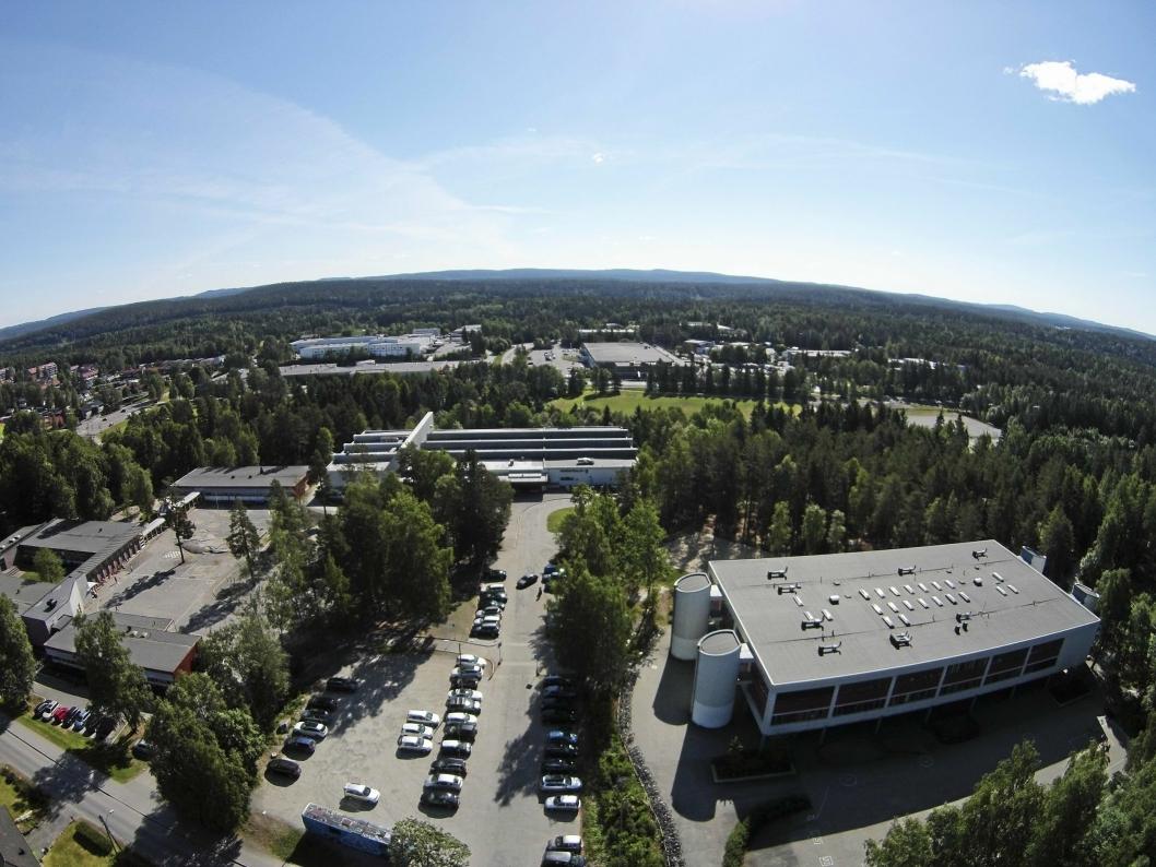 SKAL BYGGES HER: I bakgrunnen ser du idrettsparken på Sofiemyr, sett fra fugleperspektiv fra gjenvinningstomten ikke langt unna. Det er her den nye hallen skal bygges.