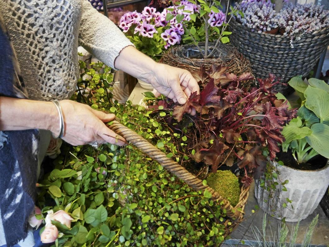 FARGERIKT OG FLOTT: Her har gjengen hos Fruene Fryd & Gaven satt sammen noen oppsatser også du kan klare å lage til din hage.