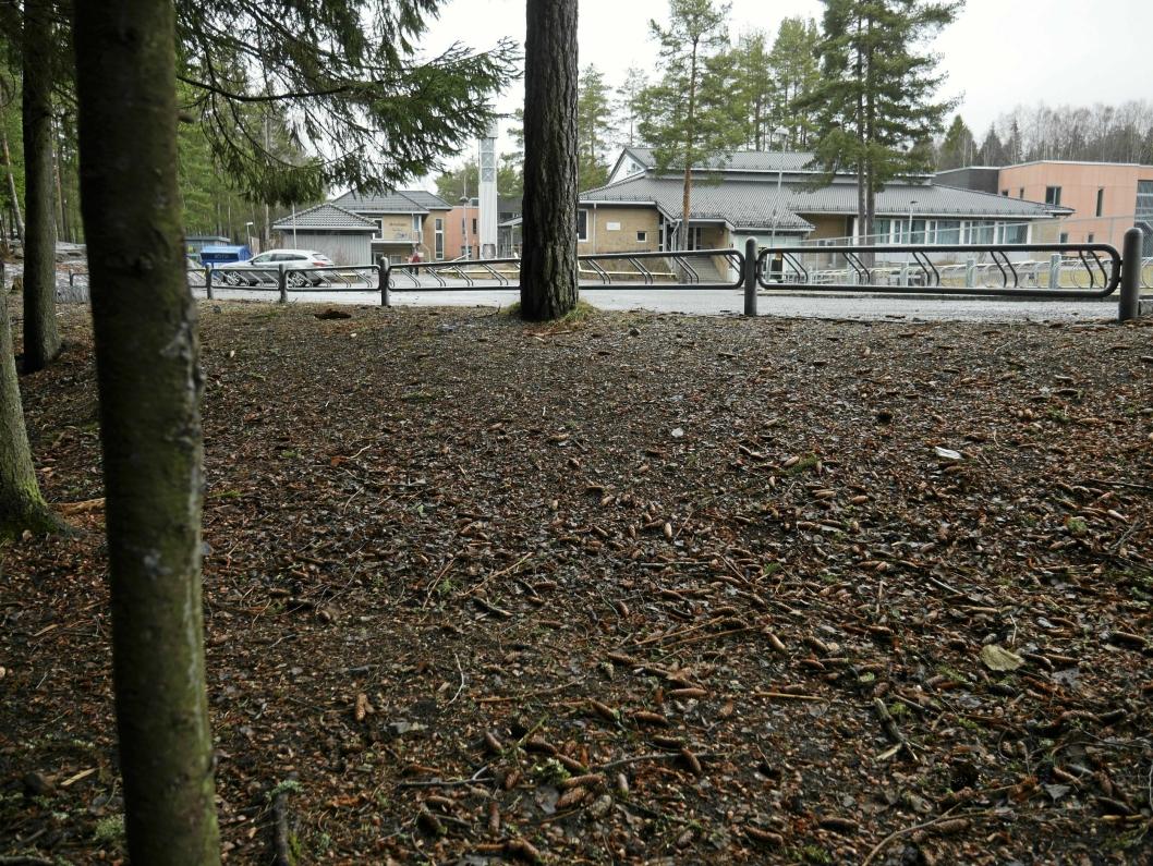 KOMMUNENS STØRSTE BARNESKOLE: Tårnåsen skole er kommunens største barneskole.