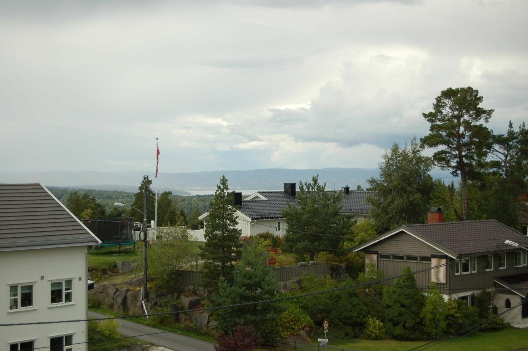 OSLO I SIKTE: – Det er nok Oslo-utsikten som er mest attraktiv for mange, sier Røssel. Snur vi oss andre vei, er det skog så langt øyet kan se.