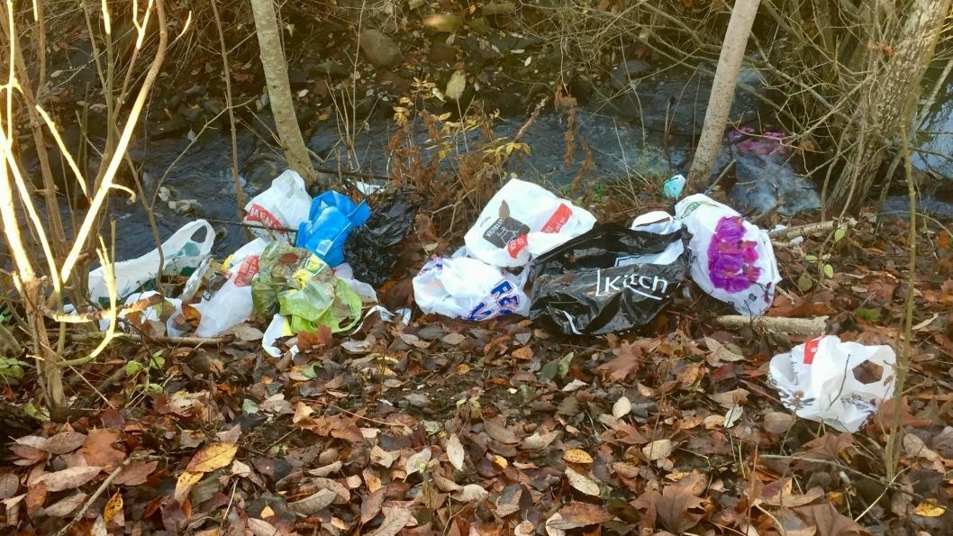 FLYTER: Det flyter av plastposeri bekken bak miljøstasjonen ved Kiwi og Pamparius Pizza.