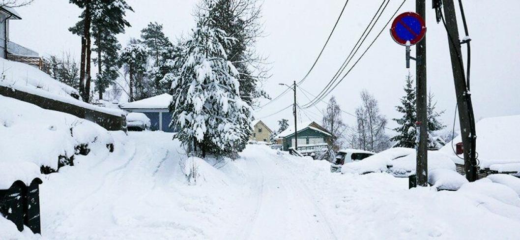 FØLG MED PÅ SKILTENE: Mange steder er det ikke lov til å parkere i vinter.