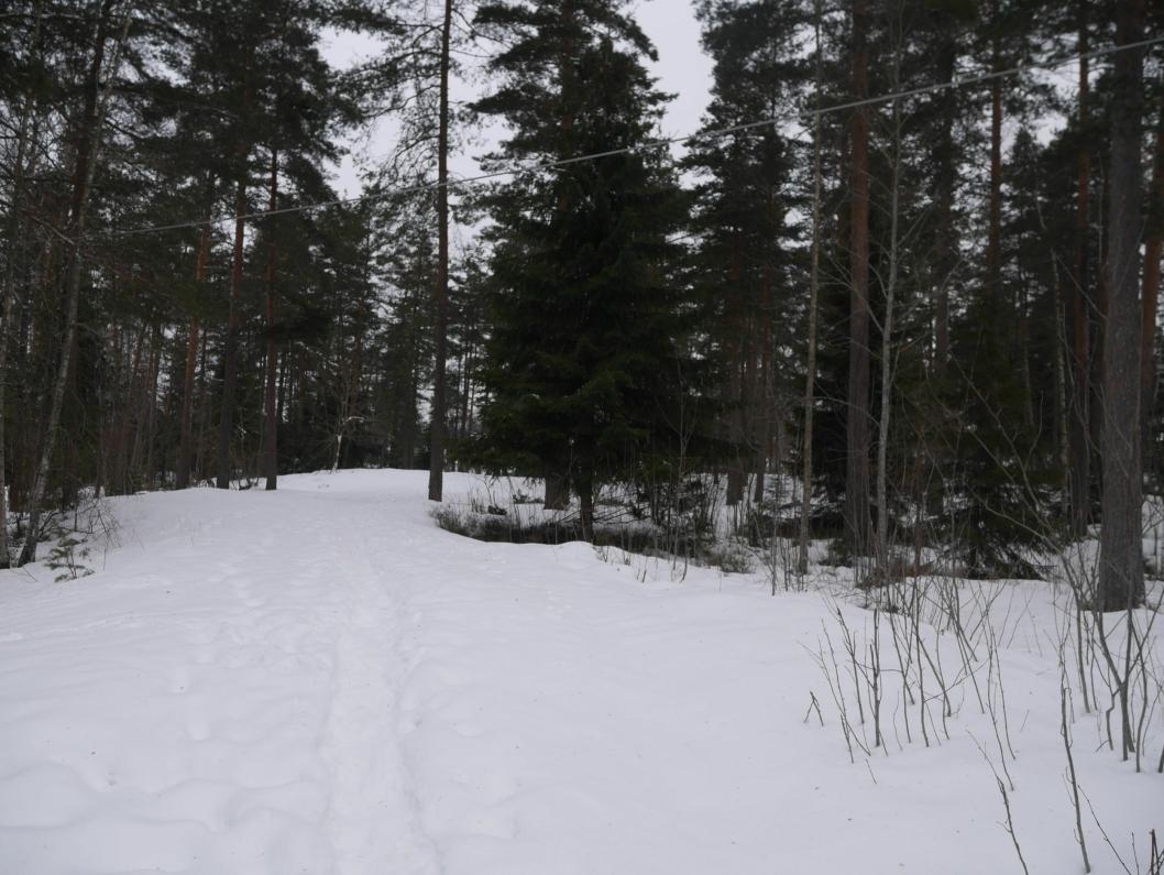 TIL SALGS: Her, i Lokes vei 5 på Tårnåsen, skal det også selges.
