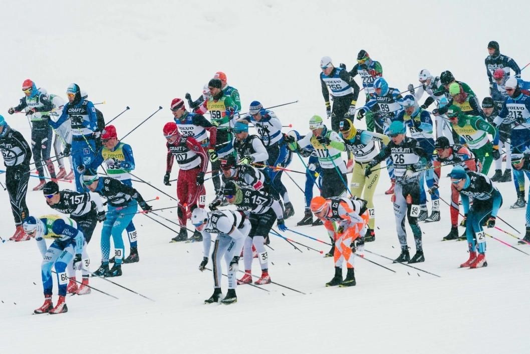 EN AV MANGE: Gifstad kjempet med mange andre om de gjeve plassene i årets Vasaloppet. Ser du ham?