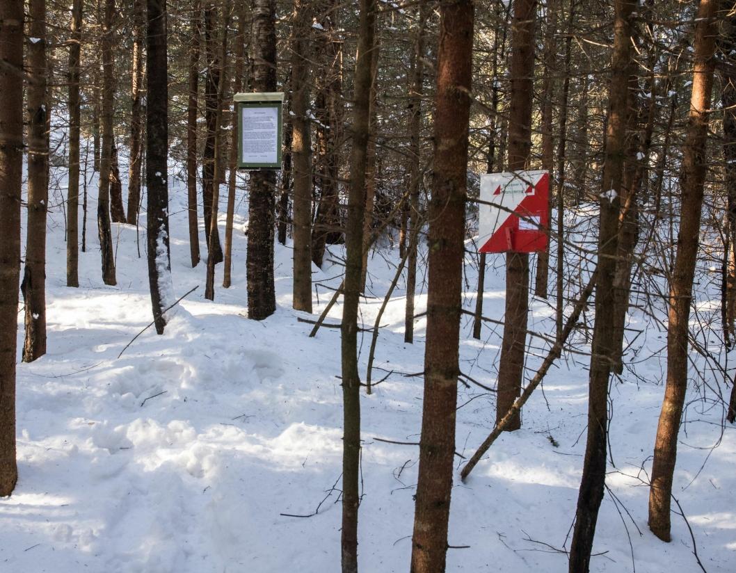 POST PÅ PLASS: Her ser du et bilde av en av postene som Skautraver'n-folket har hengt ut. Snøen skal ikke få stoppe turorinteringen og turgleden!