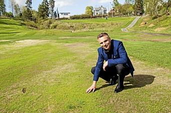 Lover gull og grønne greener