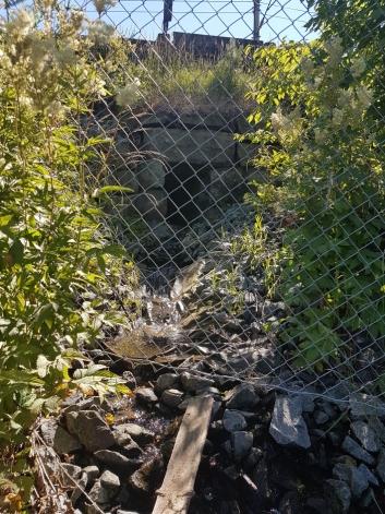 KLOAKK I BEKKENE: – Oversvømmelsene i kloakknettet ender i lokale bekker, som igjen renner ut i Kolbotnvannet, sier Tom Christensen.