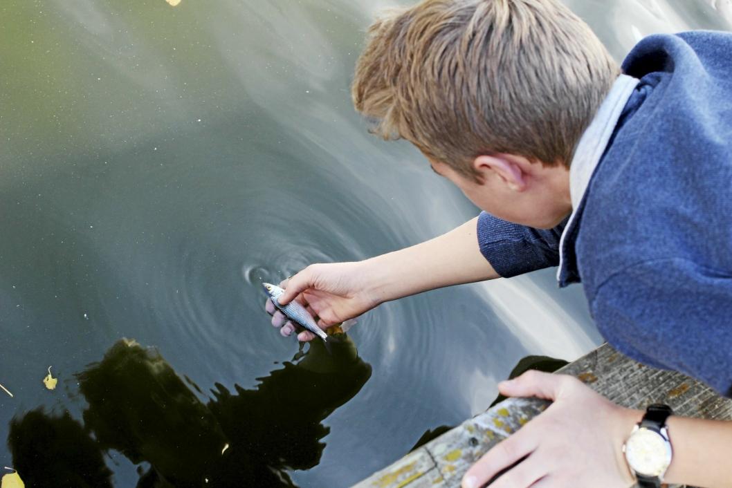 – TRIST: Lars Bjergene (15), leder for Natur og Ungdom Oppegård, synes det var trist å se mange døde fisk i vannet.