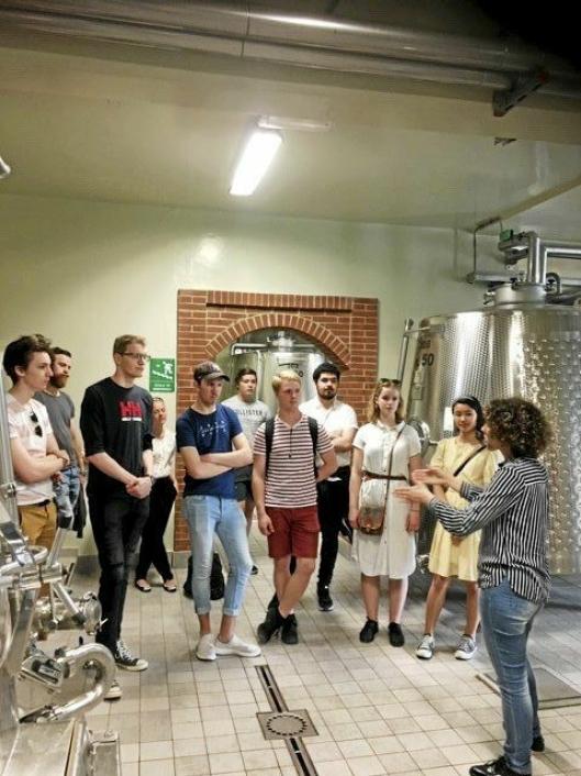 LÆRER OM VIN: Tårnhuset-gjengen på 16 kokker og servitører får en leksjon i italiensk drikke under studieturen i Piemonte.