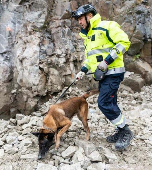 Vegar Falsten og hundene han trener farter land og strand rundt for å gjøre det tryggere på anleggsplasser.