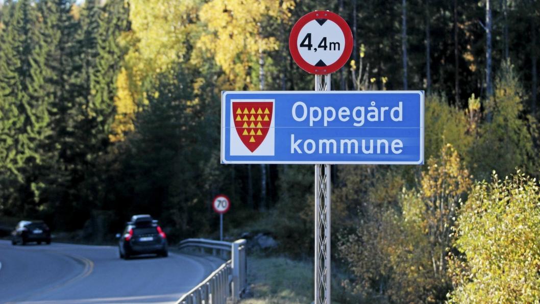TEGN? Det første skiltet som du møter når du kommer med bil til kommunegrensen vår fra øst er et rødt kommunevåpen i Taraldrudveien.