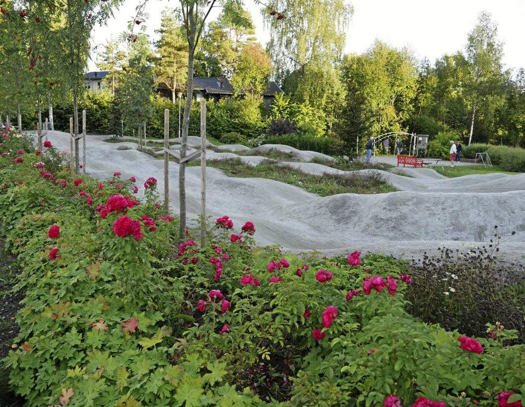 GENERASJONSPARKEN: I dag ligger Generasjonsparken like ved Kolben kulturhus, men den skal flyttes til Tangen, ifølge den såkalte sentrumsplanen.