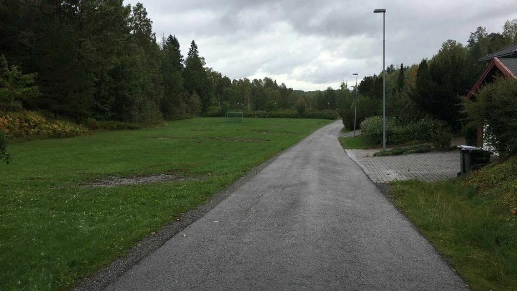 SOLKOLLEN: Her på sletta langs skogen, sydøst for Kolbotn gravlund, skal det bygges midlertidig skole for 400 elever.