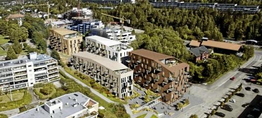 Liv og lære i Høyre