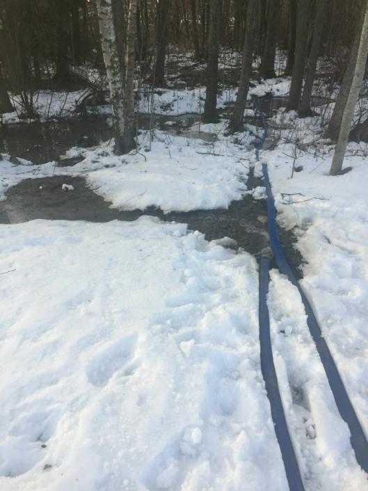 UTSLIPP TIL KOLBOTNVANNET: Bildet ble tatt onsdag 2. januar og viser at anleggsvannet fra anleggsplassen pumpes rett ut i våtmarksområdet ved Storebukta.