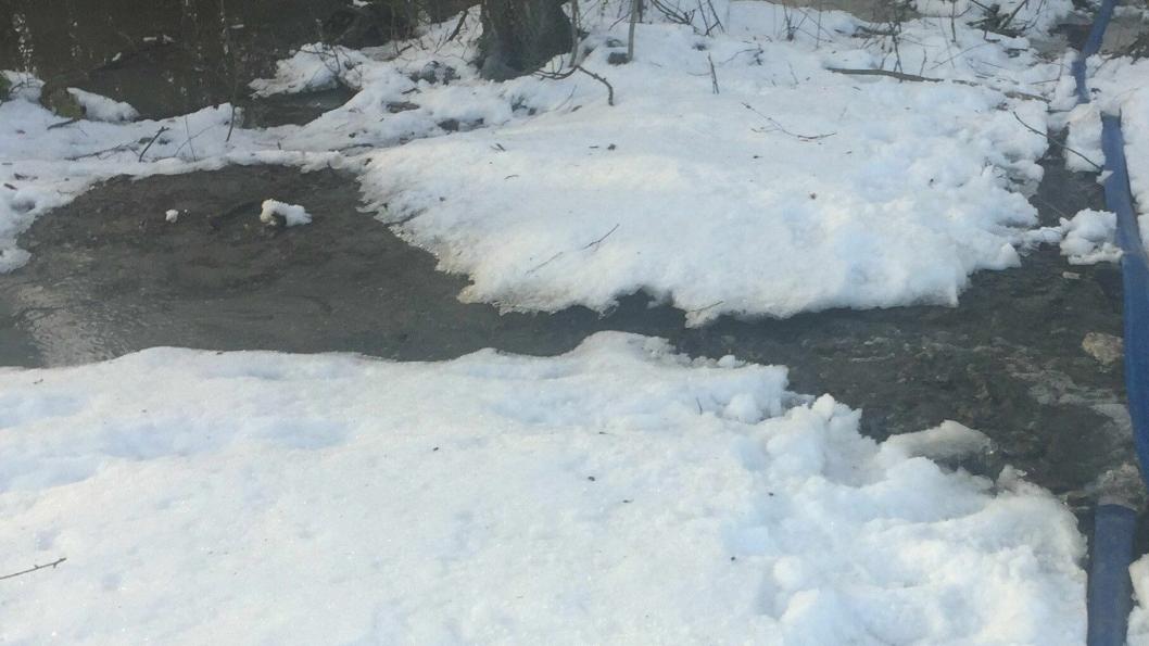 TO UKER MED UTSLIPP I SUMPSKOGEN: Betydelige mengder anleggsvann ble pumpet fra byggegropen rett ut i våtmarksområdet ved Storebukta.
