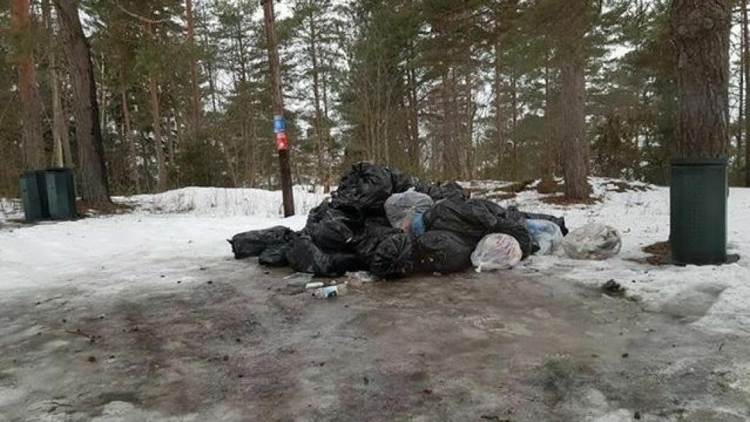 DUMPET PÅ PARKERINGSPLASS: Flere poser med søppel har i dag blitt funnet på parkeringsplassen ved Bestemorstranda.
