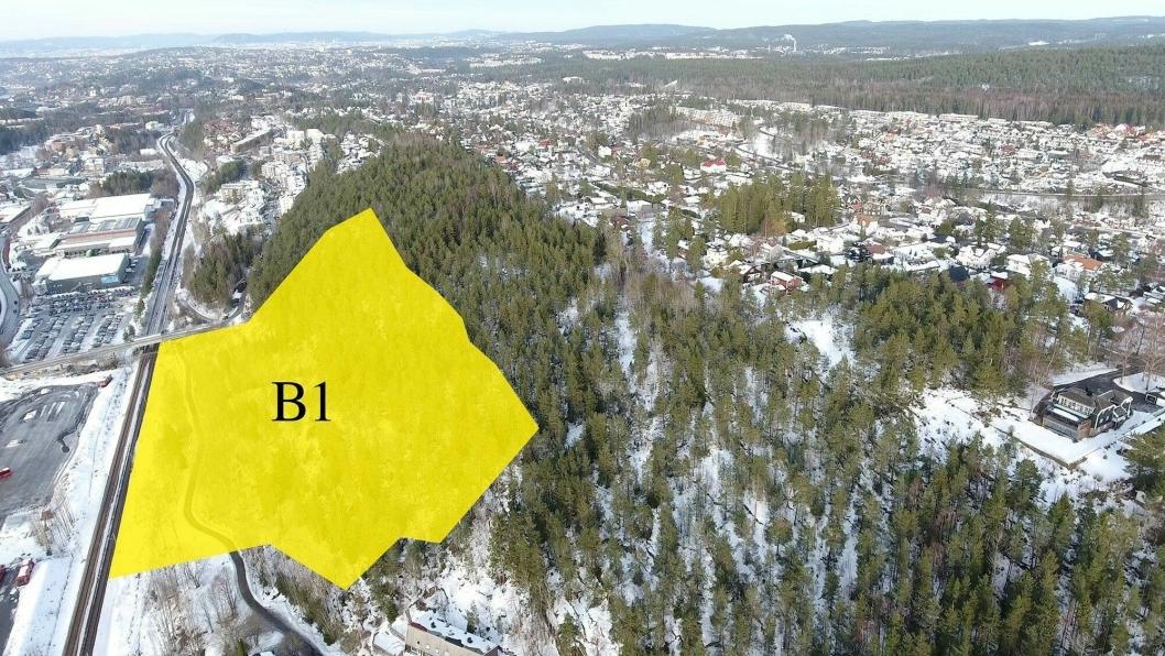 DENNE SKOGEN KAN BLI SOLGT: Det gule feltet viser det aktuelle området som kommunen vil selge til boligutbyggerne, slik at det kan bygges ut en sammenhengende bebyggelse fra Oslo-grensen til Holteveien.