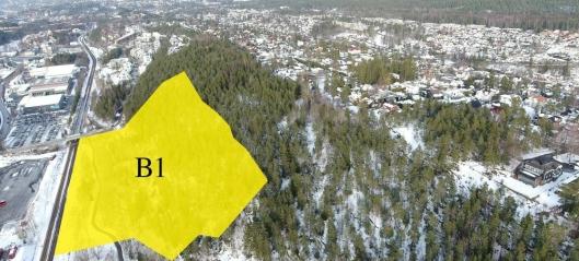 – Bevar skogen på Rikeåsen!