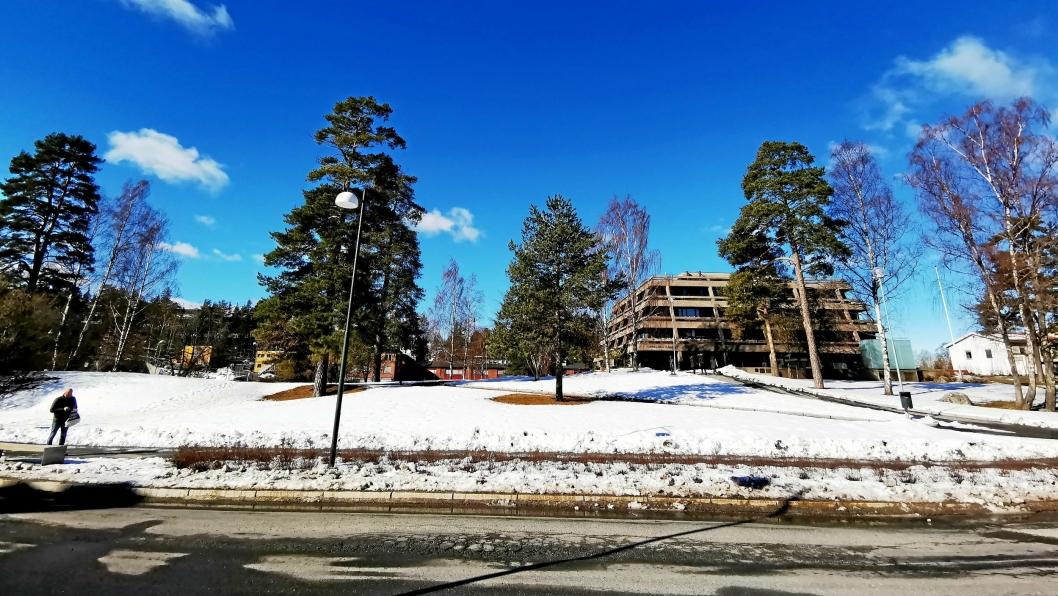 FORESLÅR Å SELGE ALT: Rådmannen foreslår at parken selges i sin helhet, sammen med resten av rådhuskvartalet. Parken skal bevares som offentlig park rundt rådhusbygningen i henhold til sentrumsplanen.