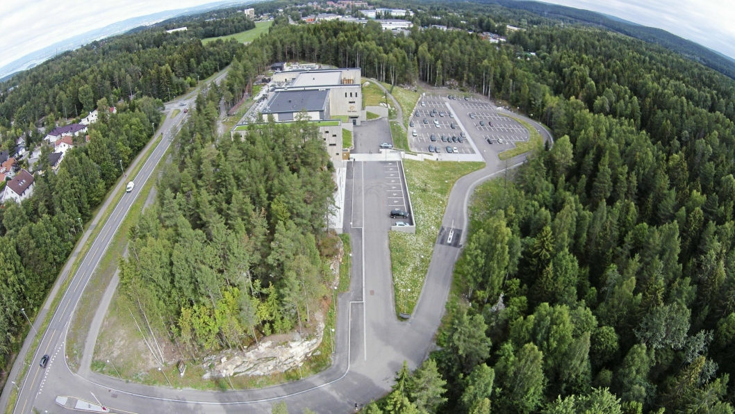 THE WELL-TOMTEN: Her, i skogholtet sør for The Well, skal det bygges et 40 meter høyt hotell.