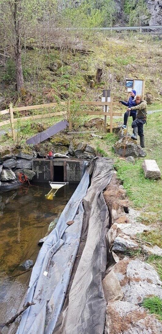 VIKTIG REGISTRERING: Fisketelleren er nå plassert ved oppgangssaga i Gjersjøelva Natur- og kulturpark.