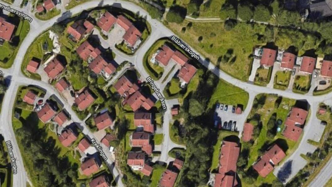 STOPPET I KRYSSET: Hendelsen skjedde mellom klokken 14:00 og 15:00 onsdag 12. juni da 14-åringen gikk en tur med hunden i nabolaget ved Bringebæråsen.