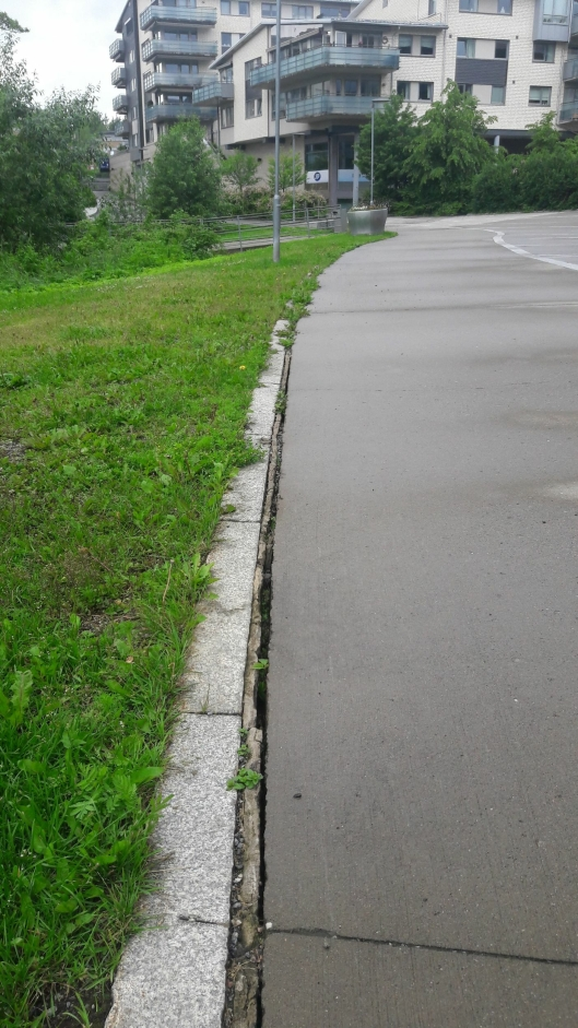SPREKK I ASFALTEN: Det er en sprekk i asfalten mellom Kolben og bryggen. Foto: Gunnar Sveen