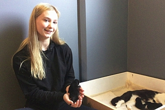 Eirill reddet kattepusene!