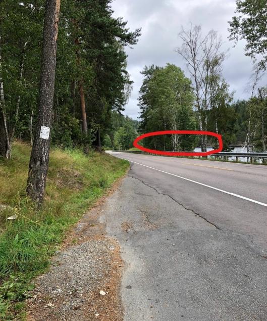 HER LIGGER BILVRAKET: Den røde ringen på bildet viser omtrentlig lokasjon til bilvraket oppdaget i Gjersjøen.