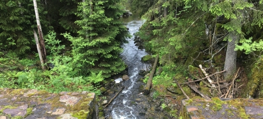 Naturområdene i Nordre Follo må sikres