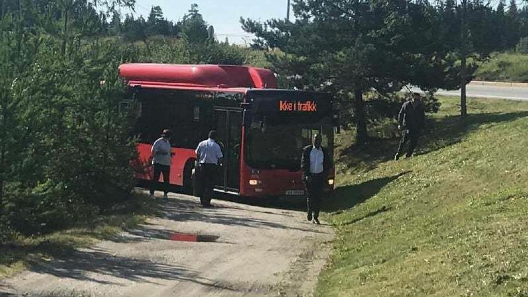 PRØVDE Å SNU VED FANGDAMMEN: En Ruter-buss var definitivt utenfor sin rute torsdag formiddag. Video: Geir Amundsen