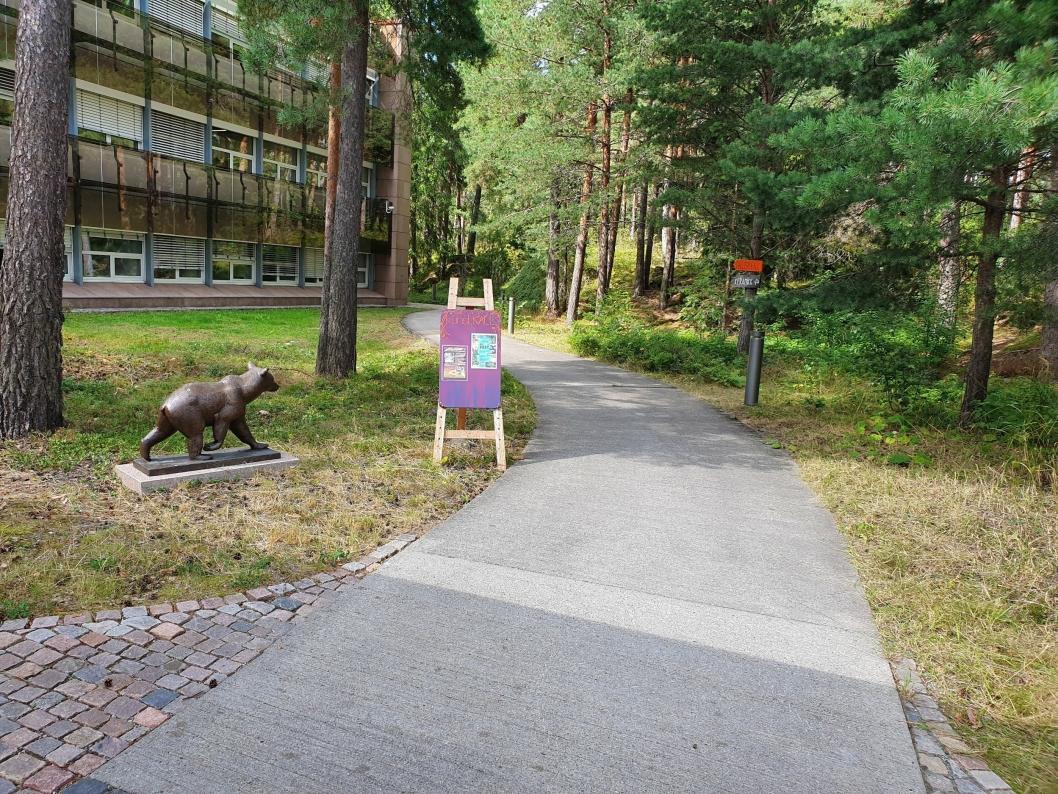 SKAL FORVANDLES TIL KUNSTSTI: Stien, som starter til høyre for inngangen til Rosenholm Campus og fører til kunstKALL, skal dekoreres med kunst laget av barn og kunstnerne.