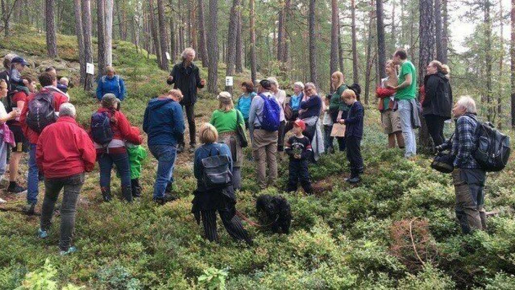 BOTANISK VANDRING: Mange fulgte med da botaniker Anders Often ledet botanisk vandring, en av flere parallelle programposter for dagen.