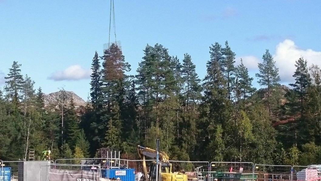 FORTID: Skogsåsen finnes ikke mer.