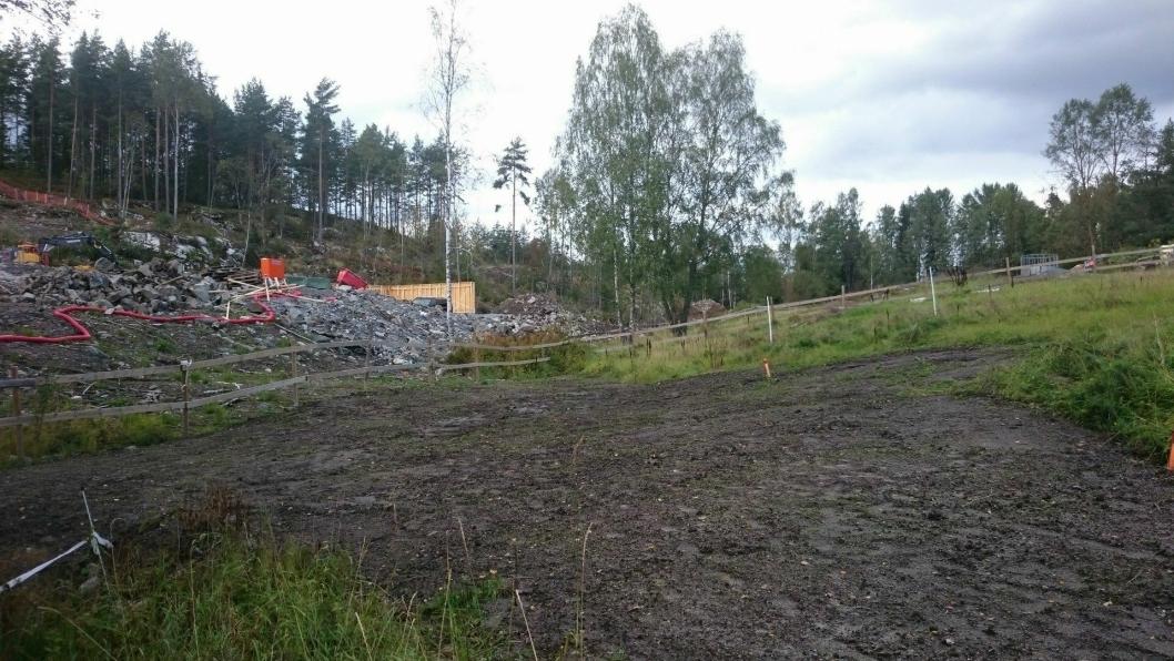 INGEN BUFFERSONE: Var det virkelig ikke mulig å bevare en buffersone med trær mot gården Øvre Ekornrud?