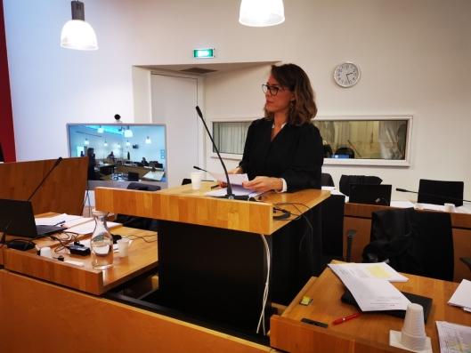 FRIFINNES: Den ene brorens forsvarer, Marijana Lozic prosederte i tingretten i dag, og la ned påstan dom at hennes klient skal frifinnes.
