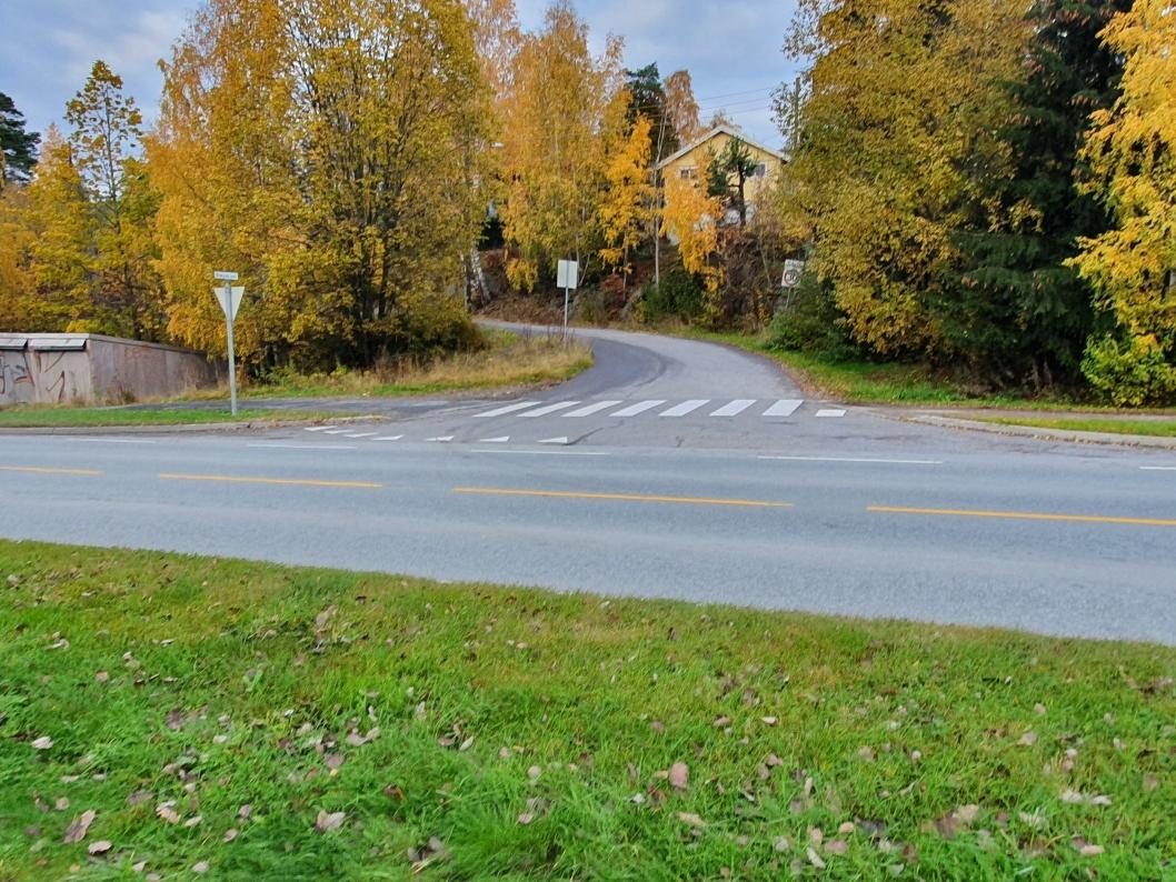 FRØYAS VEI: Det skal bygges opphøyde gangfelt ved innkjøringene til Frøyas vei (avbildet), Ødegården, Sofiemyr senter og Søndre Skrenten.