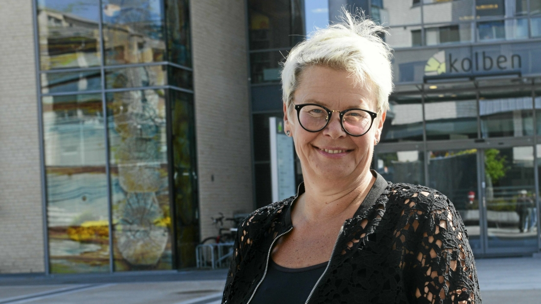 NORDRE FOLLOS FØRSTE RÅDMANN: Gro Herheim startet i stillingen som amninistrasjonssjef for Nordre Follo kommune fra 1. september 2017. Fredag 1. november skal hun presentere den første Strategi- og handlingsplan for 2020-2023 for den nye kommunen.