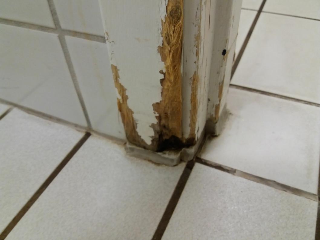 RÅTESKADER: Slik ser det ut i damegarderoben til varmtvannbassenget på Høyås bo- og rehabiliteringssenter.
