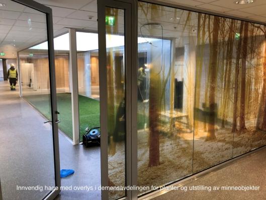 INNVENDIG HAGE: I demensavdelingen er det laget innvendig hage for planter og utstilling av minneobjekter.
