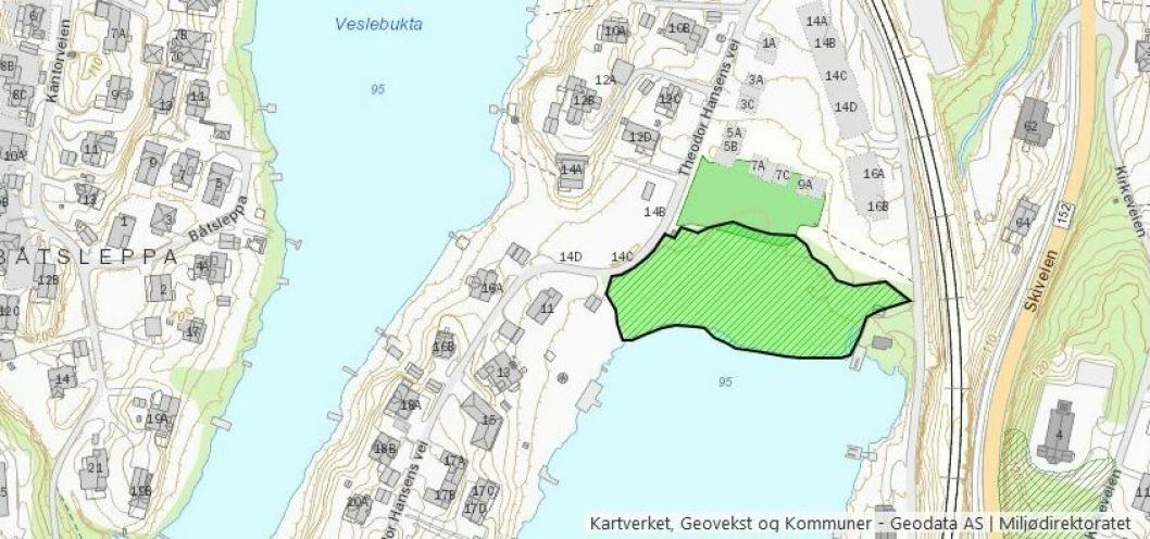 STOREBUKTA: Lokaliteten i det grønne området på kartet vurderes som viktig (B-verdi) grunnet stor dekning av typiske sumpskogsarter og høy rødlistekategori på naturtypen (rik sump- og kildeskog).