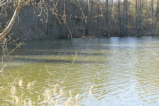 UTGJORDE STOR MILJØRISIKO: Da oljelekkasjen ble oppdaget for tre år siden, måtte kommunen sette i gang strakstiltak med lenser, satt ut i Myrvollbekken og Kolbotnvannet.