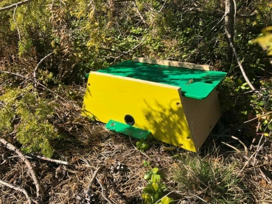 """INVESTERTE I HUMLEKASSE: """"Spesialkonstruert ynglekasse for humler, med egnet reirmateriale. Med dette humlehuset kan du se og lære mer om de trivelige humlene, samtidig som du kan hjelpe hageplantene med pollinering"""", skriver produsenten."""