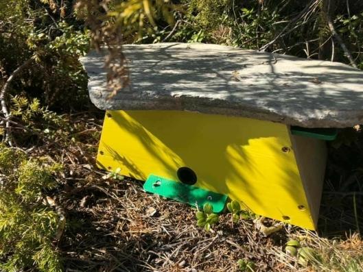 BLE GODKJENT TIL SLUTT: Familien Tomten ble anbefalt å oppgradere den nye humlekassen med et skifertak og bedre innredning.
